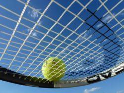 tennis-363666_1280